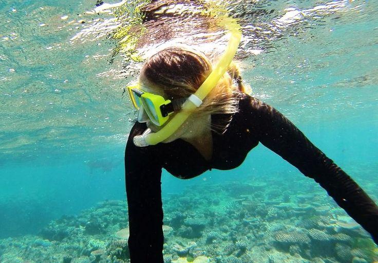 Snorkeling at the Great Barrier Reef. Port Douglas - Australia.