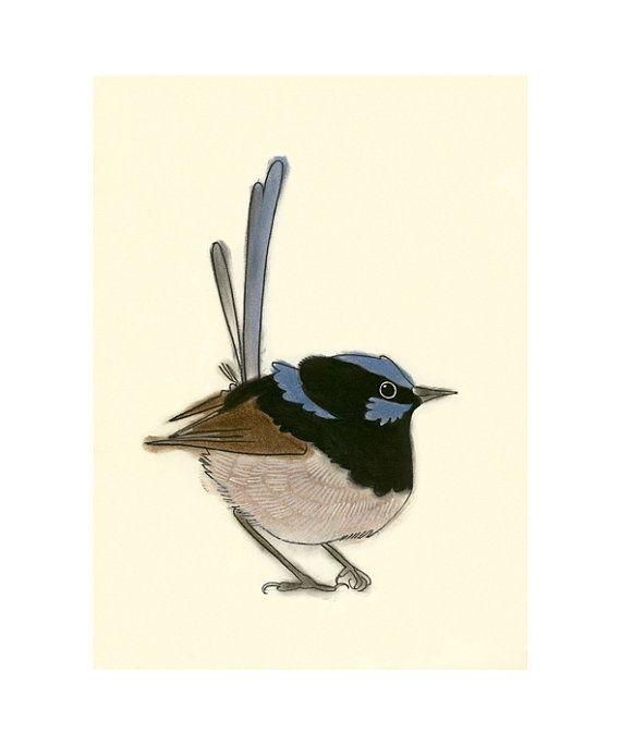 Australian bird art print -  Christopher Wren II - 4 x 6 superb blue fairy wren print via Etsy