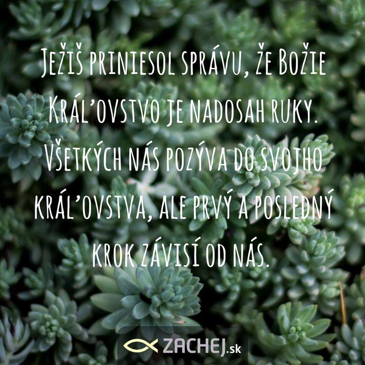 A tak sme si dnes uvedomili, ako veľmi sme vďační za Vianoce. Za to, že vďaka nim môžeme žiť v tej neuveriteľne príťažlivej Božej prítomnosti. Za to, že Boh je tým najlepším Otcom, akého môžeme mať. Že je tým, ktorý pri nás stojí za akýchkoľvek okolností. #zachejsk #dnescitam #citatyzachej #cocitat #citamkrestanskeknihy
