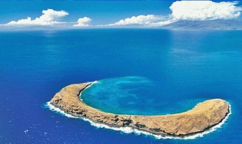 O Atol Molokini, que pertence as ilhas havaianas, foi formado há cerca de 15.000 anos atrás, tendo sido a cratera de um vulcão. Dentro desta cadeia rochosa crescente são encontradas mais de 250 espécies de peixes e 38 espécies de corais, que não existem em todo o restante do Oceano Pacífico.  Veja mais aqui: http://www.vocerealmentesabia.com/2012/12/o-mundo-azul-do-atol-molokini-ilhas.html