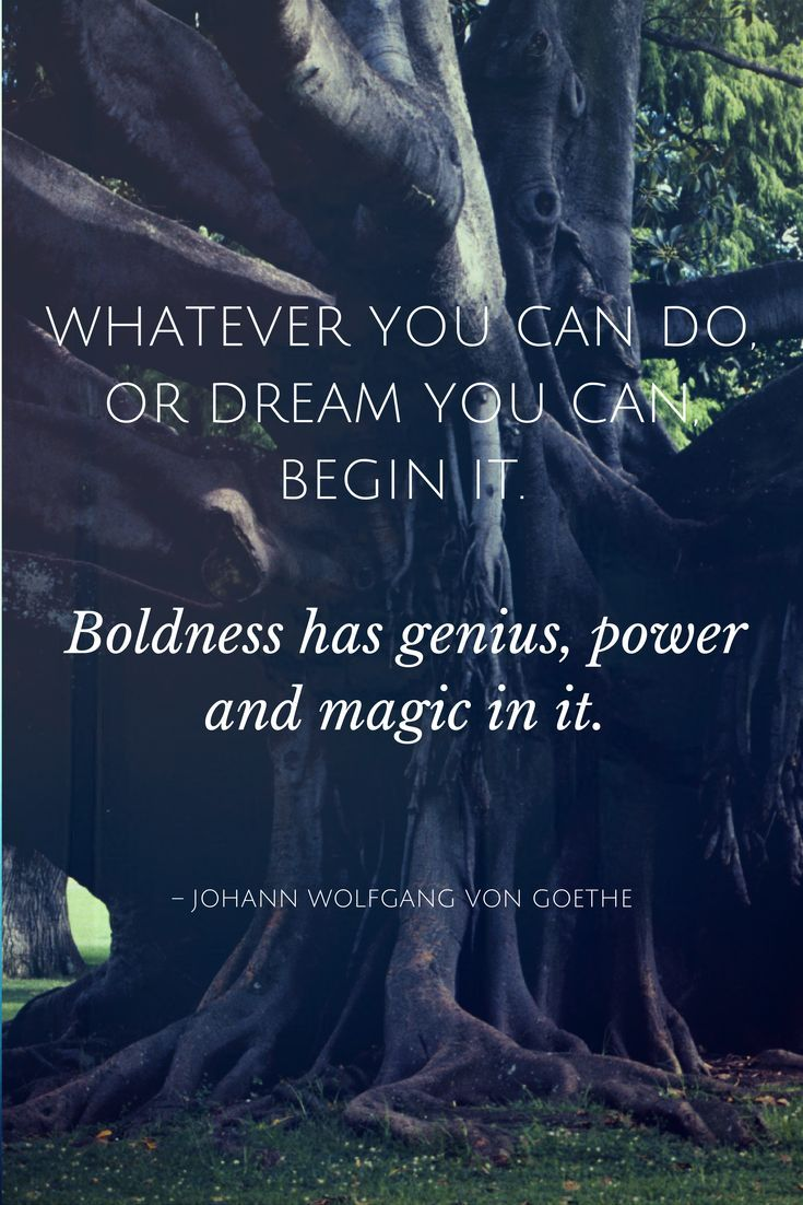 Whatever you can do or dream you can begin it. Boldness has genius, power and magic in it.