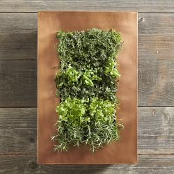 Vertical Gardening & Vertical Gardening Systems | Williams-Sonoma