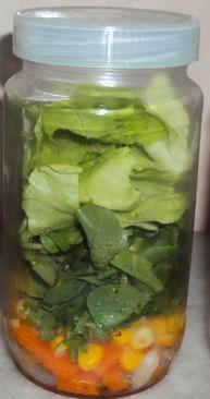 Vivere Verde: Organizzare il pranzo fuori casa: insalata sempre fresca e gustosa ovunque
