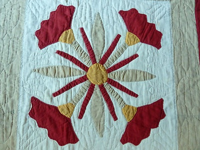 1000 Images About Baltimore Brides And Appliqu 233 Quilts On