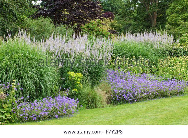 Late Summer Border With Geranium, Veronicastrum Virginicum, Phlomis