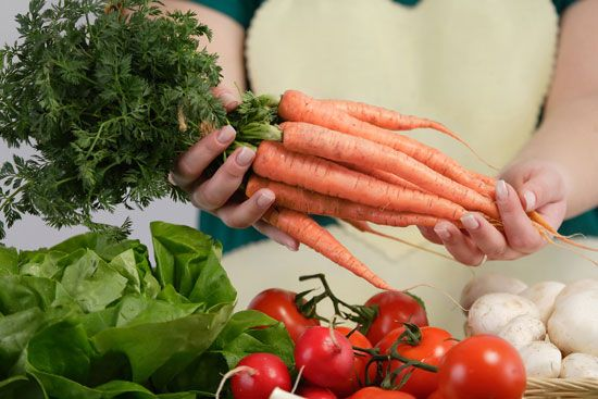 Best Shade-Tolerant Vegetables