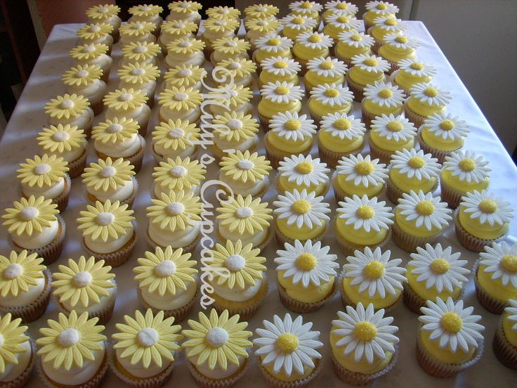 Daisy Cupcakes from Mily's Cupcakes in Buenos Aires (http://milyscupcakes.blogspot.com/)