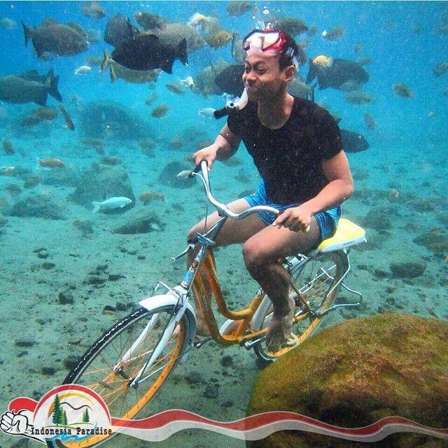 UMBUL PONGGOK, KLATEN - JAWA TENGAH. Di Klaten ada sumber mata air yg sangat jernih dan banyak ikan hidup disitu. Namanya Umbul(sumber mata air) Ponggok, lokasinya di Desa Ponggok, Polanharjo, Klaten, Jaw