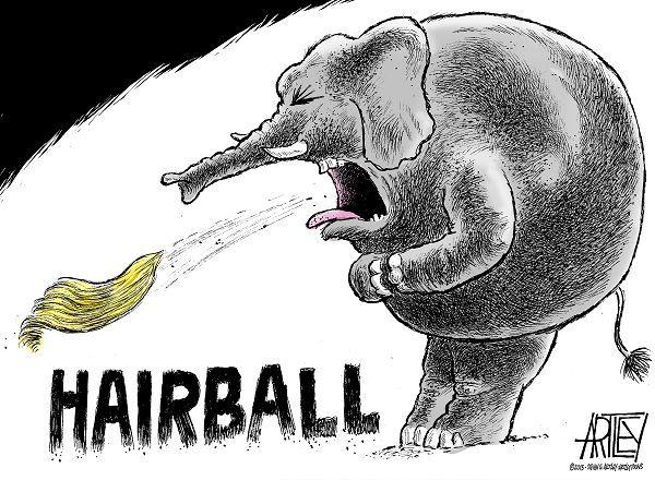 trump  the gop u0026 39 s hairball cartoon by angelo lopez