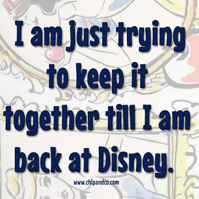 I am just trying to keep it together till I am back at Disney.