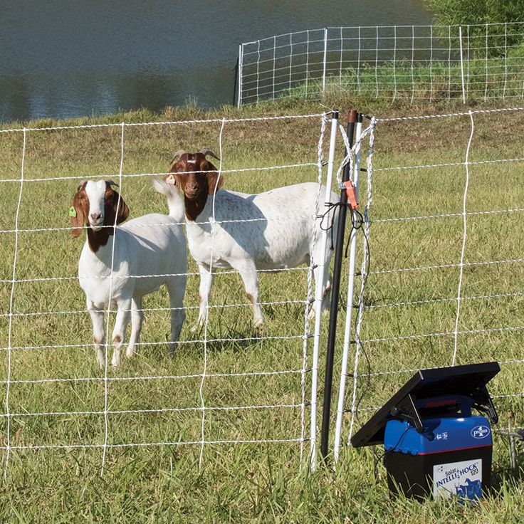 New! High-output solar powered 1.2 joule energizer. Portable all-in-one unit arrives ready to power electric fence or netting.