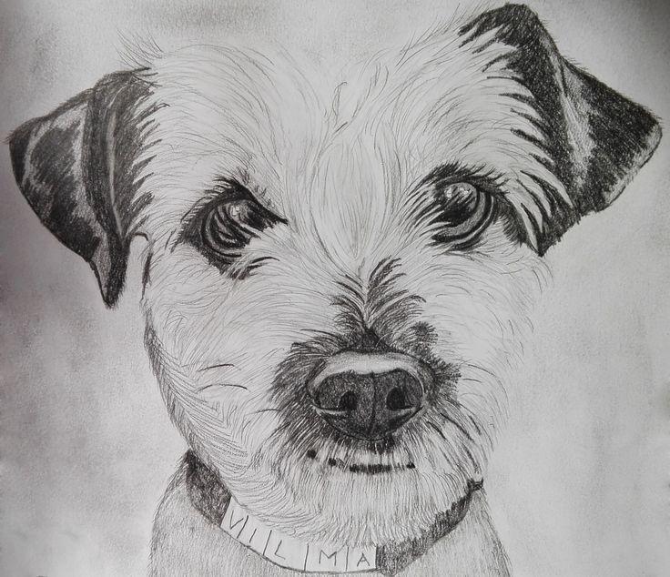 Ványi Tóth Viola rajza - Vilma kutyus