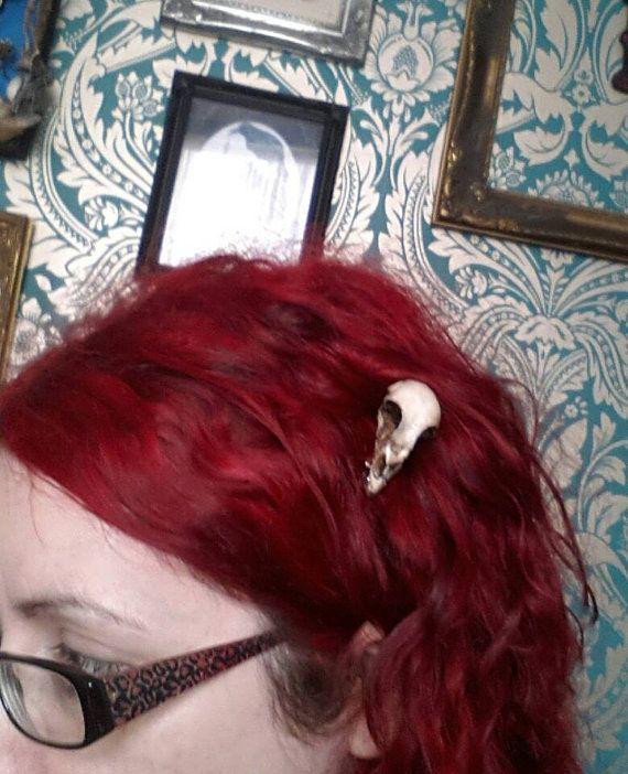 Hars gegoten vogel schedel hair clip