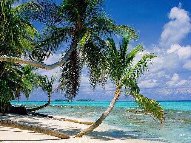 Tuvalu Islands - Travel guide
