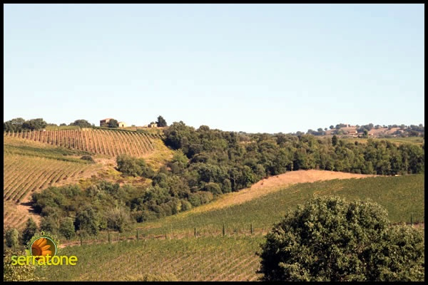 Your holidays in the wonderful land of Tuscany in Italy. Near the sea, near the hill, close to you.   http://www.serratone.com
