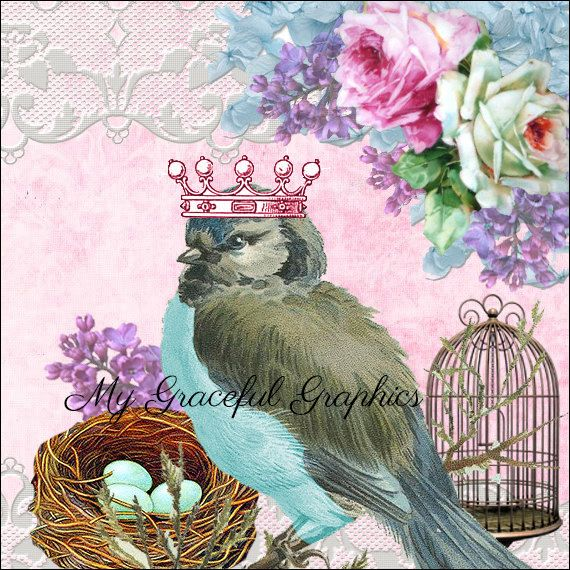 Banner and Avatar set,- Etsy shop-Roses-wings-birds-crown-lace-bird cage-nest-eggs-pink-