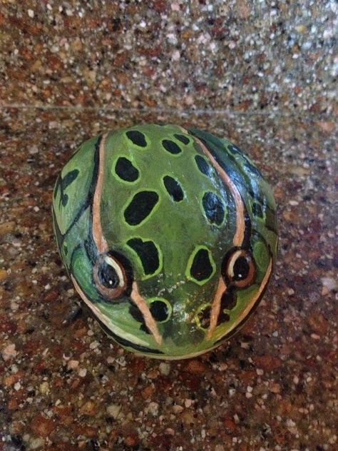 Leopard Frog Painted Rock by EquestrianCreations on Etsy: