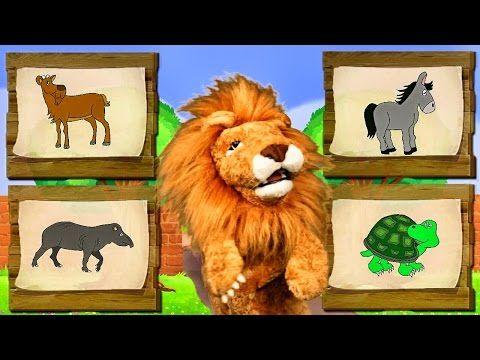 Canciones Infantiles del Zoo - El León Lorenzoo nos presenta a los animales - Videos Educativos # - YouTube