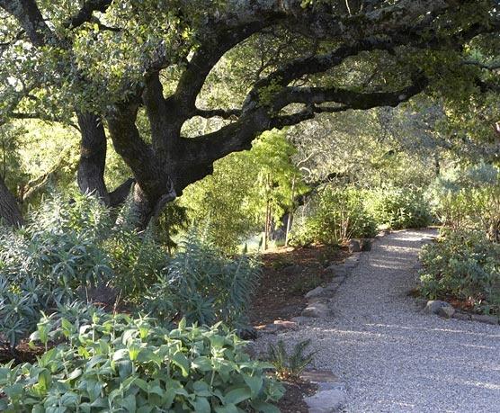 17 best images about sonoma garden on pinterest gardens ForSonoma Garden Designs