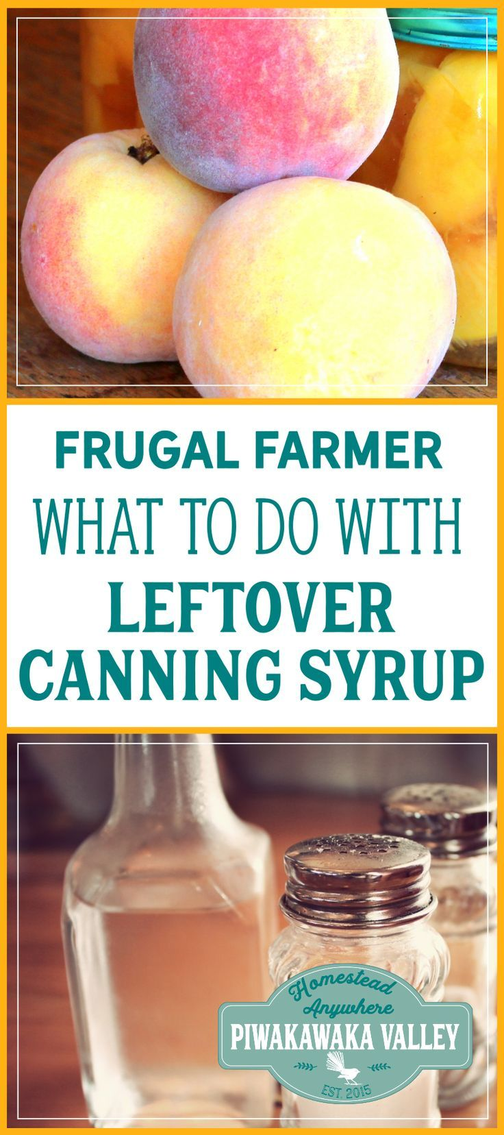 Super frugal tip: How to use leftover canning syrup for something productive! Fruit vinegar recipe. fermented foods, fermented pickles, sea salt fermented vegetables, fermented recipes, easy fermentation for beginners, how to ferment vegetables, fermentation tips, step by step fermenting food, health, families, immune system, gut health, gut biome, natural health, weston price, whey fermenting vegetables to preserve them. #ferment #guthealth #kombucha #fermenting #homesteading #naturalhealth