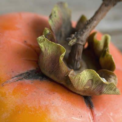 Recepten met kaki of Diospyros   exotisch fruit voor gerechten
