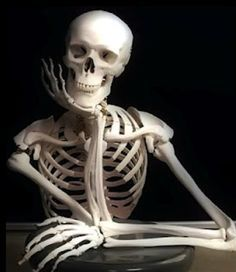 esqueleto-esperando.jpg (560×647)