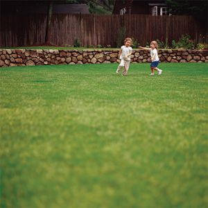 When to fertilize, water, mow, and deal with weeds and pests depends on where you live. Bookmark this lawn-care timeline for your zone.   Photo: Keller & Keller   thisoldhouse.com