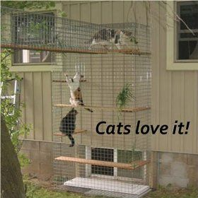 Cheap Enclosure Outdoor Cat Furniture | Room With A View Petit Outdoor Cat Enclosure Cheap