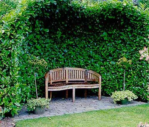17 best ideas about curved outdoor benches on pinterest fire pit seating curved bench and - Green fencing ideas ...