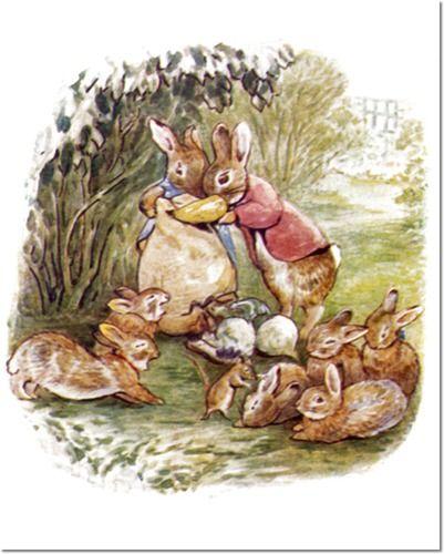 beatrix potter bunnies | Beatrix Potter II - Beatrix Potter - The Tale of The…