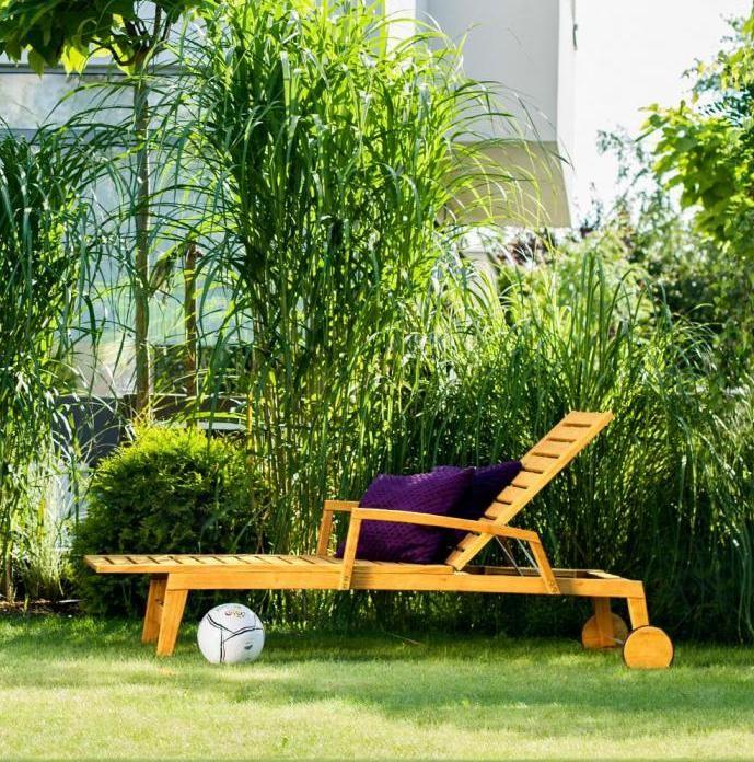 Drzemka w ogrodzie
