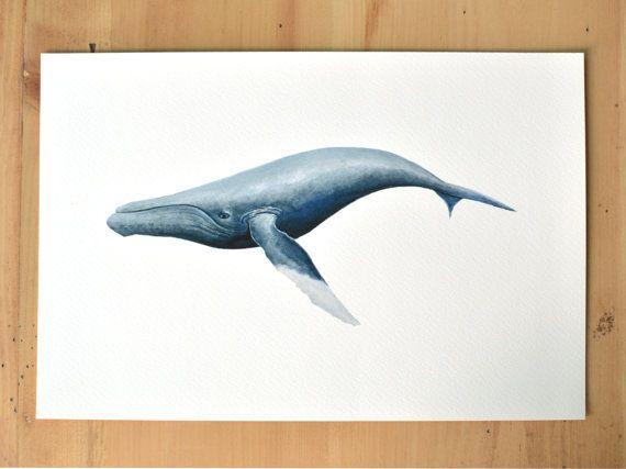 Fine art giclée print van walvis aquarel. 8 x 12 print is archiveringsdoeleinden kwaliteit en zal niet vervagen.