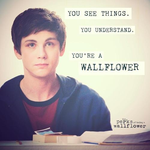 movie quote: the perks of being a wallflower <3