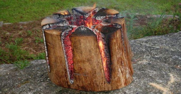 Deseori când mergeți în natură, aprindeți un foc doar pentru a crea o atmosferă confortabilă și a petrece frumos timpul. Pentru un astfel de foc sunt necesare lemne care vor arde bine. Este suficient să strângeți câteva crengi uscate și focul este gata! Însă, cei care vor să gătească în natură trebuie să aibă lemne uscate de calitate. Echipa noastră este nerăbdătoare să vă dezvăluie un truc foarte util al unui vânător. Un astfel de foc este numit torța suedeză. Acest truc vă va ajuta să…