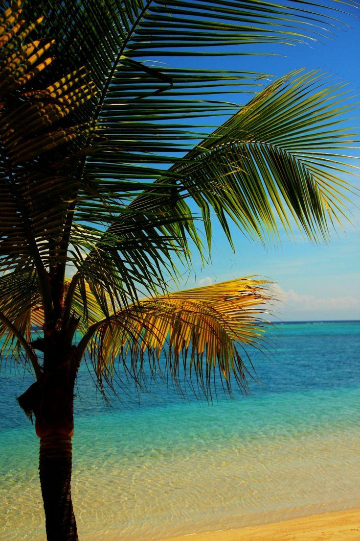 15 best San Pedro Belize images on Pinterest | San pedro belize ...