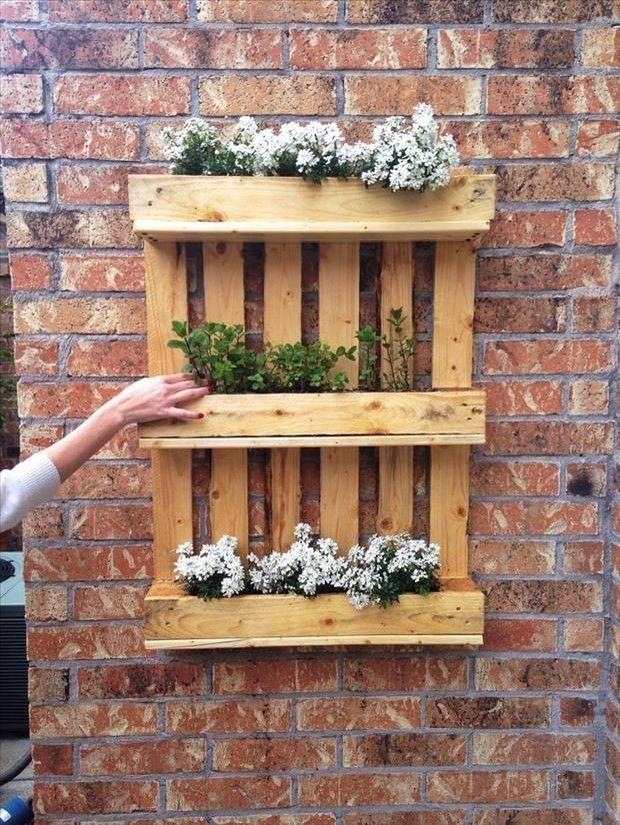 A versatilidade dos pallets permite um universo de combinações e utilidades. De jardim suspenso à estante de livros, a criatividade é toda sua!