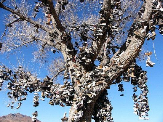 """Το μοναδικό δέντρο με τα παπούτσια βρισκόταν στη Νεβάδα των ΗΠΑ, στον αυτοκινητόδρομο 50, τον αποκαλούμενο και """"πιο μοναχικό δρόμο της Αμερ..."""