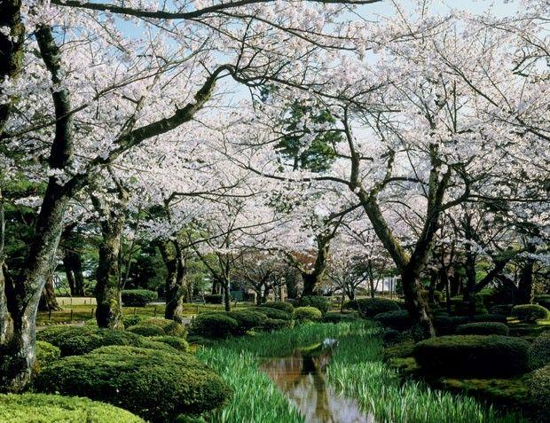 Kenroku-en situado em Kanazawa, na costa oeste do Japão (Foto: Glow Images )