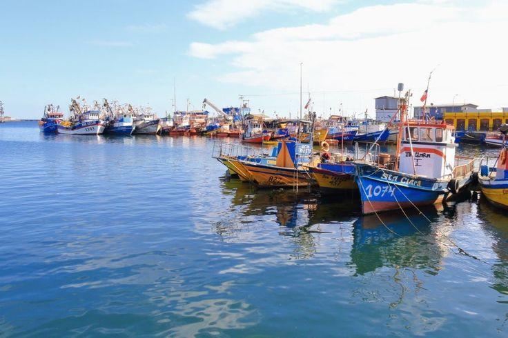La flota pesquera de Caldera, Atacama, Chile  https://500px.com/photo/211000349