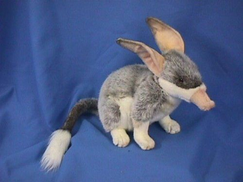 Amazon.com: Down Under Bilby Stuffed Animal: Toys & Games~~~