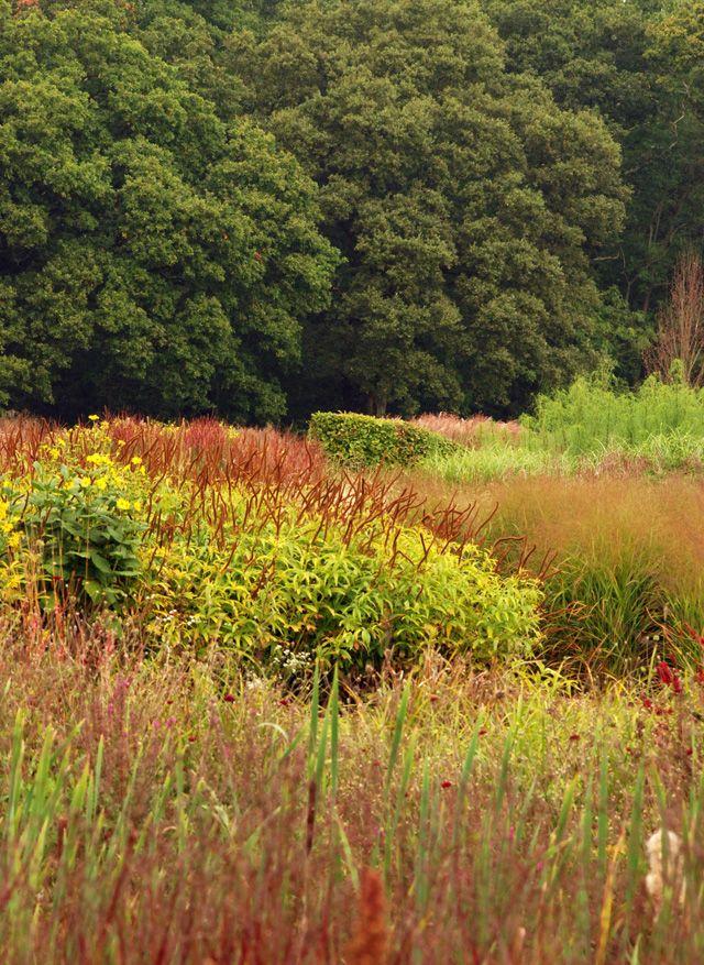 Sussex Prairies in Autumn