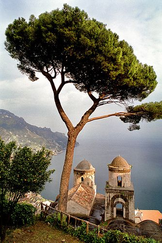 Ravello, Italy. Our Sunday morning coffee:)