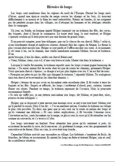Histoire pour les loups - Laurent Rémusat