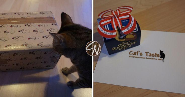 Cats Taste ist ein neuer aufstrebender Onlineshop für Katzenzubehör. Wir hatten die Freude, ein paar Produkte zu testen. Besonders toll finden wir ...