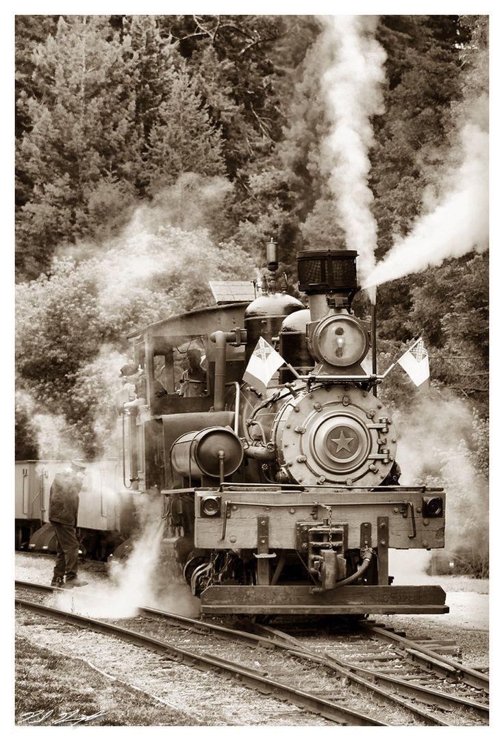 """#2 Shay """"Dixiana"""". Roaring Camp & Big Trees Railroad, Felton, California."""