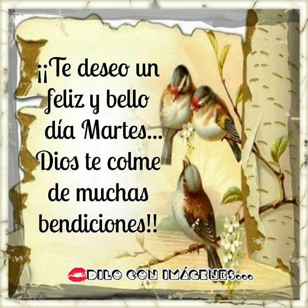 Te deseo un feliz y bello día Martes... Dios te colme de muchas bendiciones!