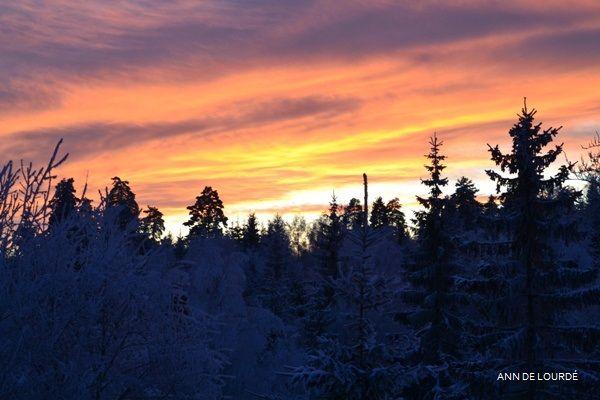 Winter Solstice, Thursday, 21st December 2017, view from the Garden.