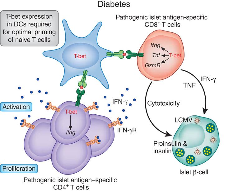 Diabetes Mellitus Type 2 *** Be sure to check out this.