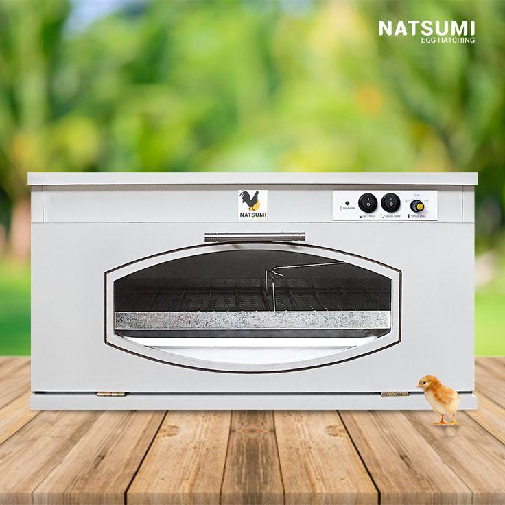 Chocadeira elétrica e semi-automática modelo 70N1 da Natsumi Egg Hatching.  Principais características: - - Capacidade para até 70 ovos de galinha. - Viragem automática dos ovos - Termostato analógico embutido Adquira a sua através do Mercado Livre http://produto.mercadolivre.com.br/MLB-866090770-chocadeira-automatica-70-ovos-natsumi-mod-70n1-_JM ou pelo Whatsapp (61) 99570-4126