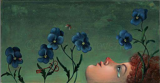 Illustrazioni di Sarolta Szulyowszky